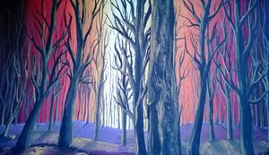 Dawn through the forest