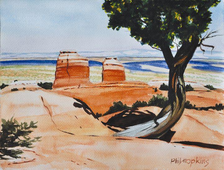 San Rafael Desert Overview - philhopkinsfineart