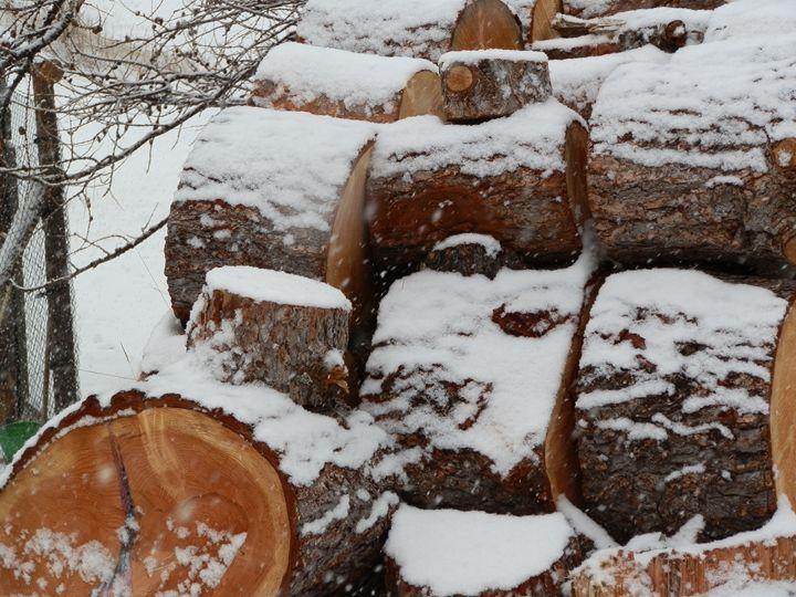 Cut Logs in Winter - Margaret LN Brooks