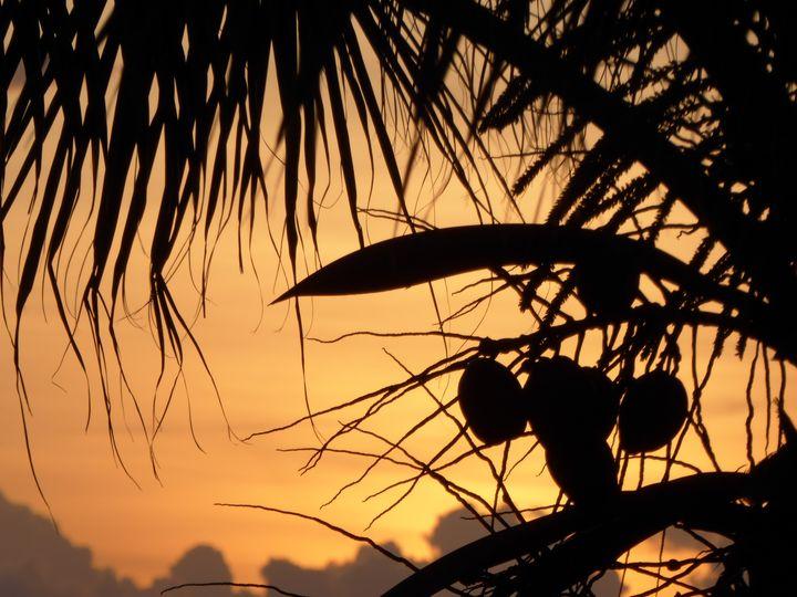 Coconut sunrise - Margaret LN Brooks