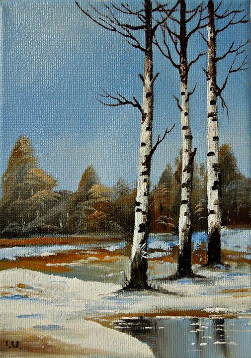 """Silver Birch Trees in Spring"""" - Naturelands"""