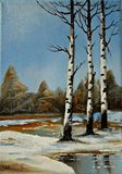 "Original oil landscape ""Silver Birch"