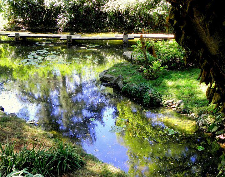 Japanese Garden Pond - BranaghBel Art