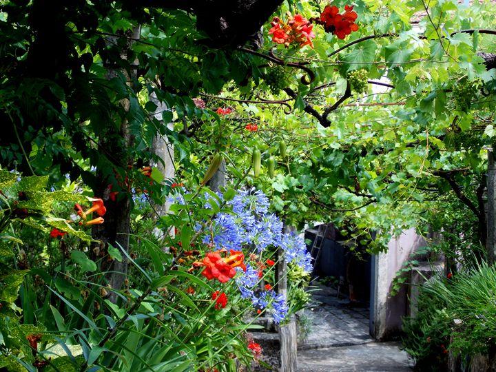 Beautiful Garden - BranaghBel Art