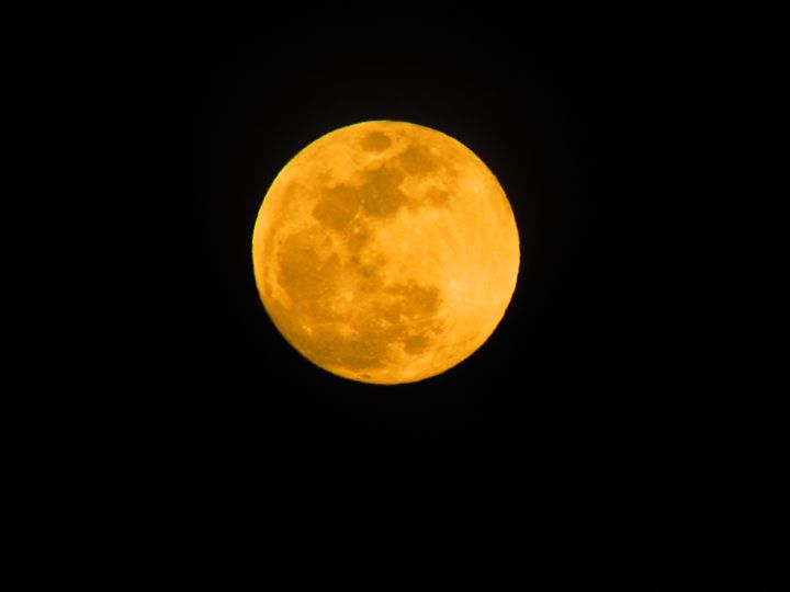 Full Yellow Moon - Ivys Dreamer