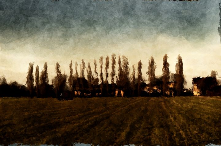Golden Sunset Through Tall Trees - CibArt