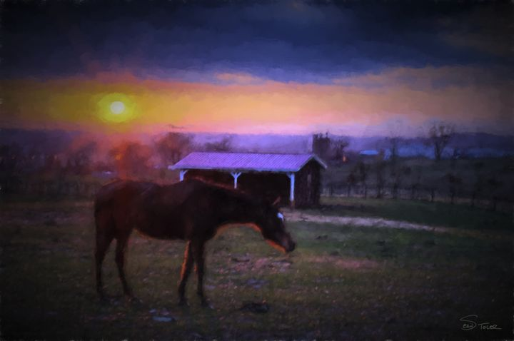 """""""All the Pretty Horses"""" - Sean Toler Photo"""