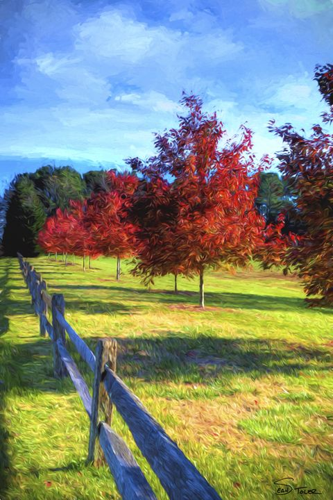 Memories of Autumn - Sean Toler Photo