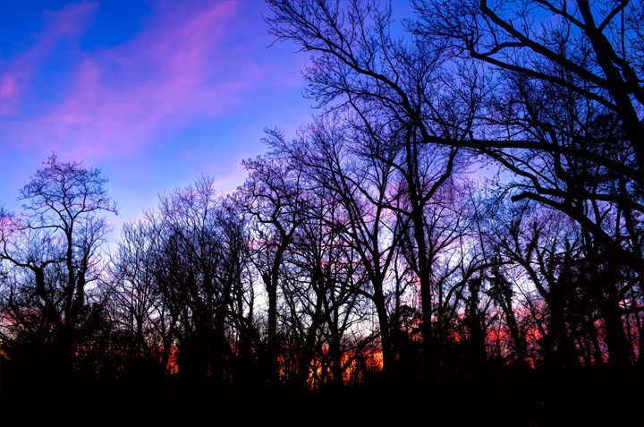 Hues and Silhouettes - Sean Toler Photo