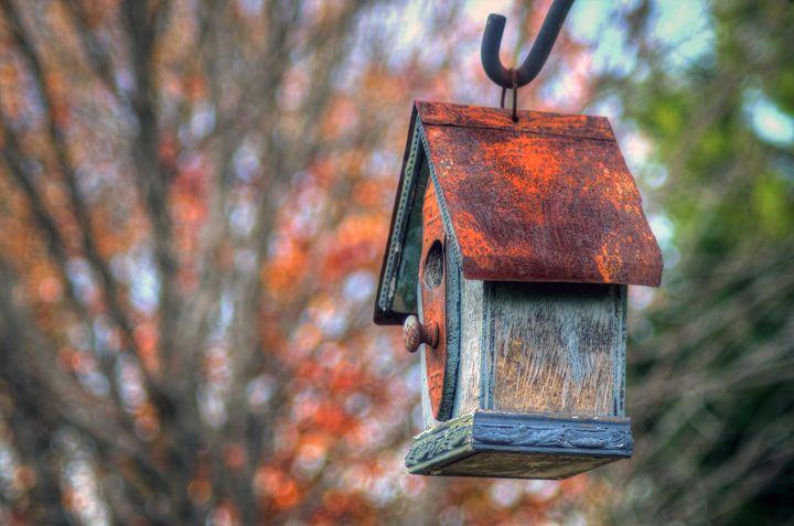 The Birdhouse - Sean Toler Photo