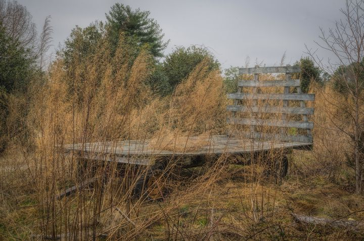 The Forgotten Hayride - Sean Toler Photo