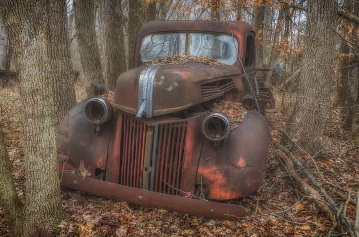 Lost in the Woods - Sean Toler Photo