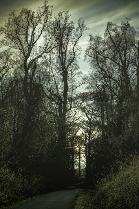 Into the Unknown - Sean Toler Photo