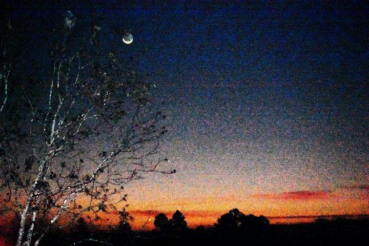 Breaking Moon - Michael.L.Todd