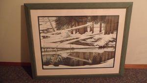 Cedars in Winter