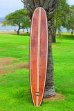 Wood Surfboard