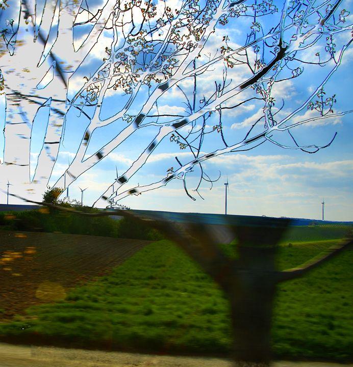 Tree? - Adi Starr