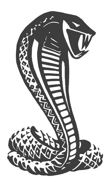 Cobra - The Mustang Artist