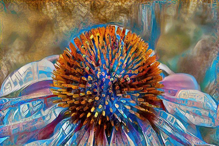 Purple Coneflower - andresilvaspace