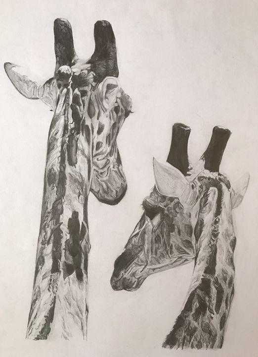 Giraffes - Elena Mauri