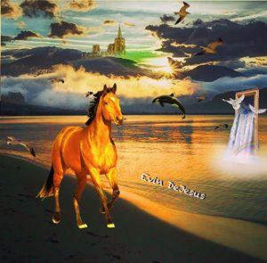 Horse Along beach