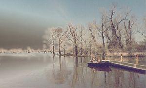Henderson Levee, Louisiana - Quentin Haslam