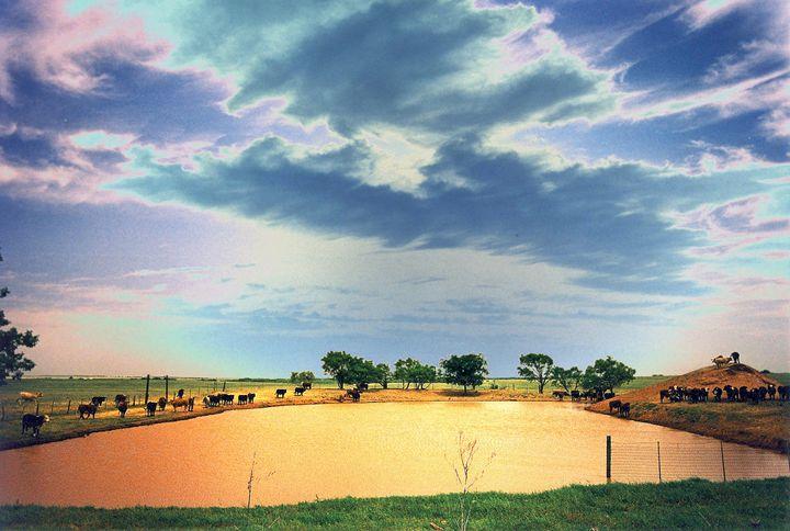 east of Seymour, Texas - Quentin Haslam