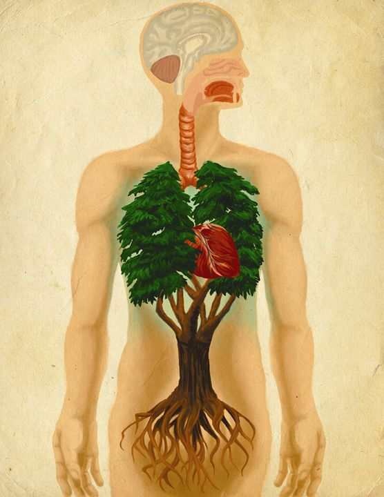 Green Breath - Tico Illustrations
