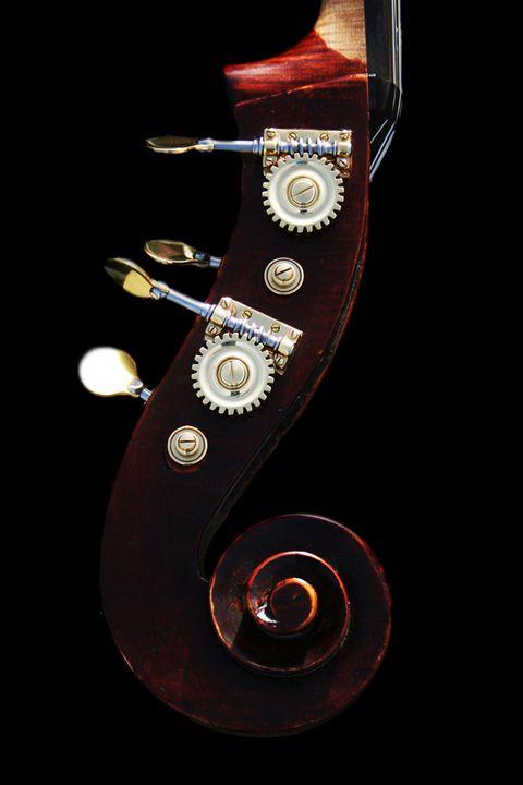 Bass 2 - Alan Harman Photography