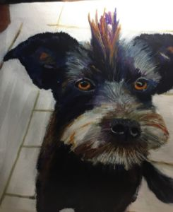 mohawk hairdo dog