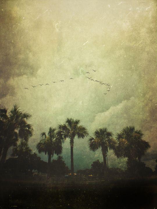 Light sky - Harold Jones