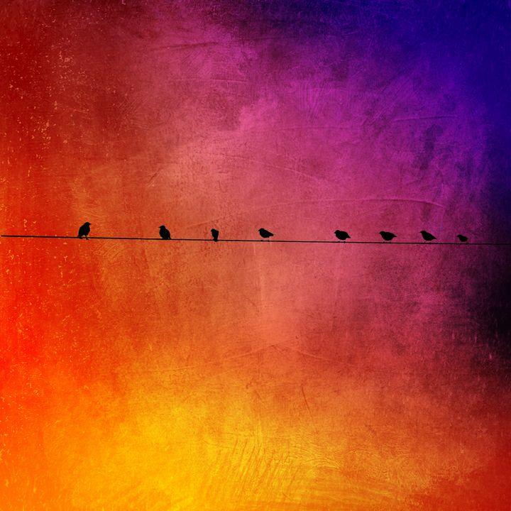 Birds - Harold Jones