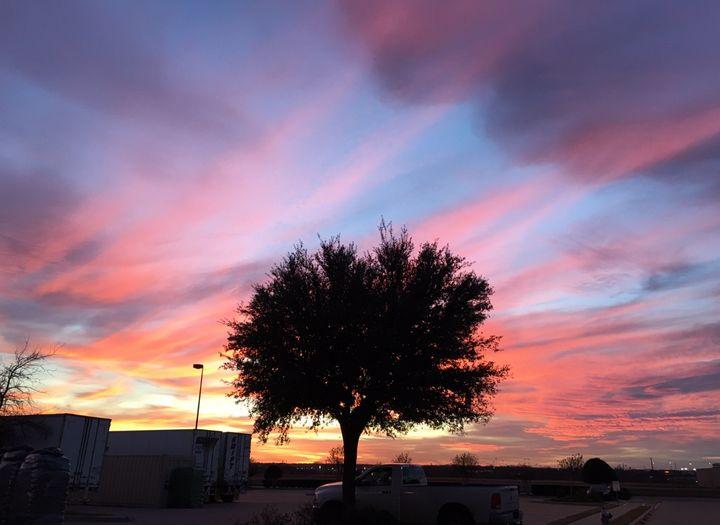 Pink sky - Deborah Daniel