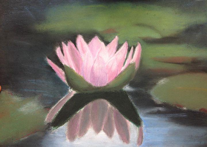 Water Lily - Hannah Feinsilber's Art