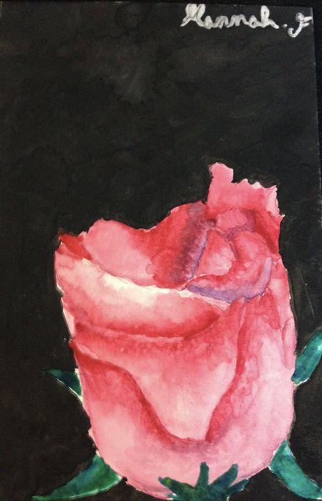 Rose - Hannah Feinsilber's Art