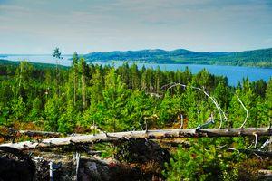 view on  lake   nackten    sweden - EUGENE  JONAI