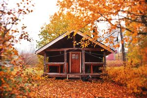 swedish woodcabin  in  autum - EUGENE  JONAI