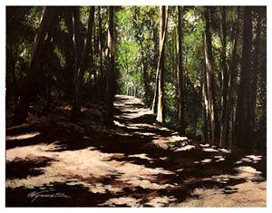 Walden Woods Path