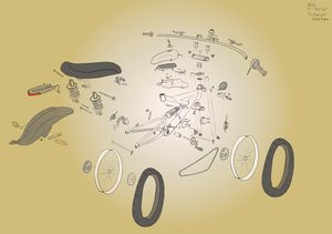 The Tran-Cycle