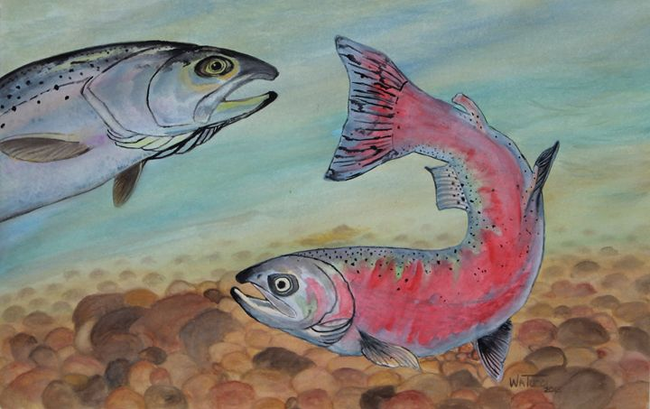 Out for a Swim - Wendy Tucci Art