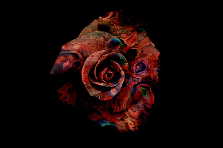 Marbled Red Rose - Fluid Nature