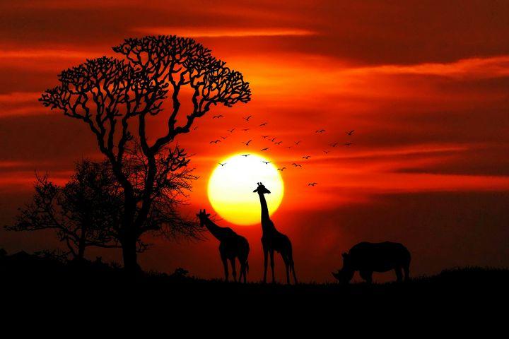 africa nature - wonderful_areas