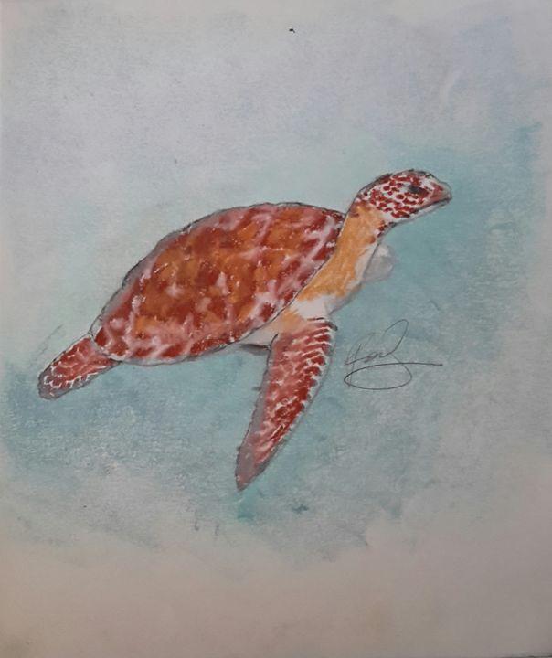 Turtle - BlueCoal