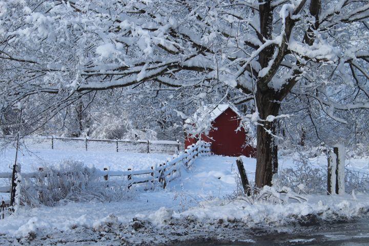 snow wonder - Camille's Closet