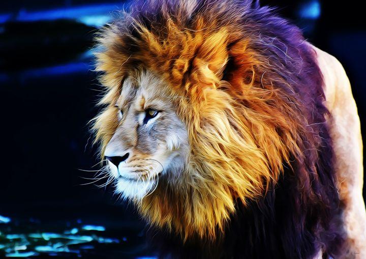 Lion at waterhole - SirG