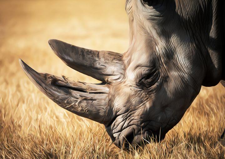 Rhino In African Grassland. - SirG