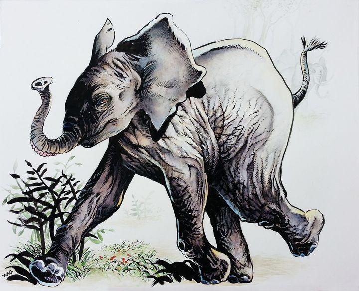 Elephant 3 - Wag