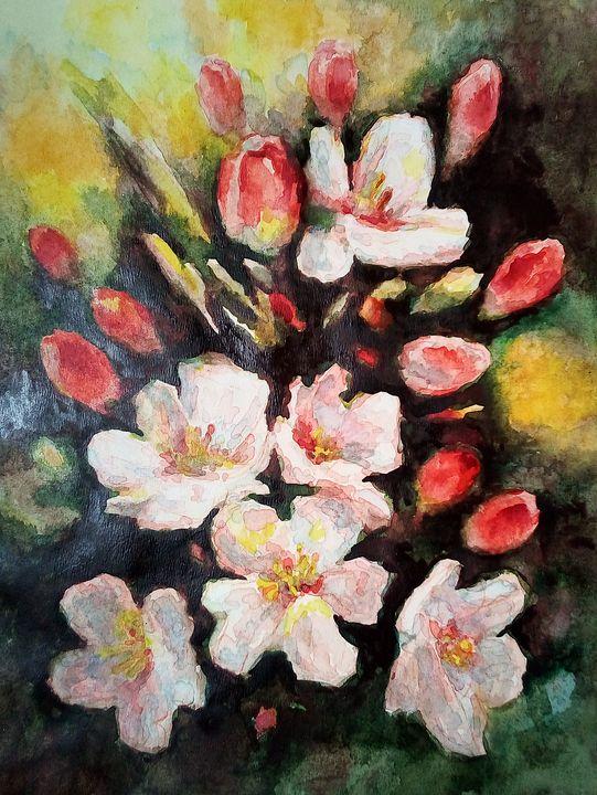 Flowering-9 - V.Tabac