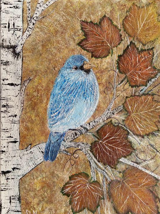 Bluebird in a birch tree - Donna Norgel