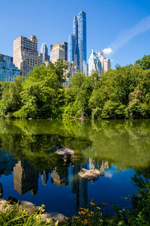 Cityscape view from The Pond - debchePhotography